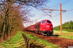 DSB MY 1149 med G 7356 Vm-Pa. Km 100,5 Fa (Tinglev-Vejbæk) 01.05.1995.