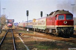 DR 132 445-8 med D 333. Büchen 31.03.1990.