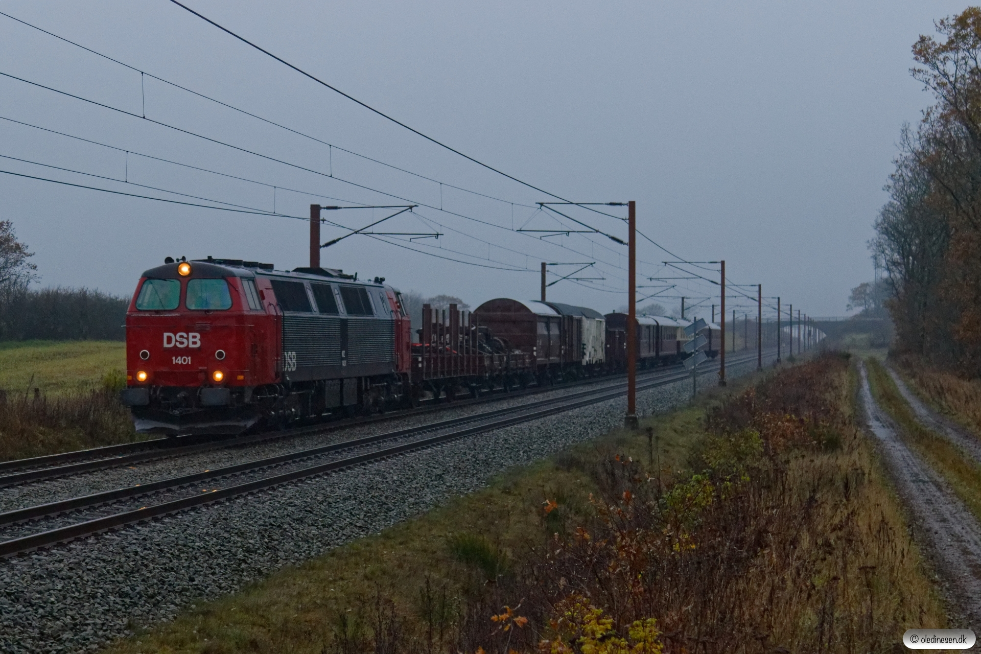 DSB MZ 1401 med VM 6495 Od-Pa. Km 50,2 Fa (Farris-Sommersted) 16.11.2019.