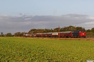 DSB MZ 1401 med VM 6304 Bm-Rd. Km 34,8 Lk (Gørding-Bramming) 06.10.2017.
