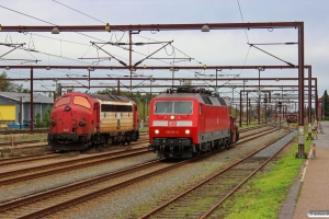 DSB Køf 285+DB 120 114-4 og RCDK MY 1134. Padborg 19.10.2013.