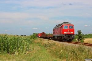 DB 232 703-9 med GD 138711 Es-Tdr. Km 7,0 Bm (Sejstrup-Gredstedbro) 25.07.2014.