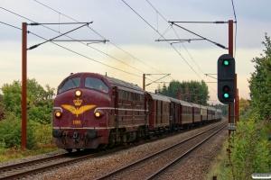 DSB MY 1101+DB 5103+GS 41985+AC 42+AX 393+BU 3703+CC 1132+B 2000+MA 460+AM 500+BMk 530+BS 480 som VM 8165 Gb-Od. Km 155,6 Kh (Marslev-Odense) 04.10.2013.