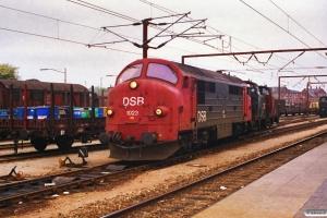 DSB MX 1023+MH 414+MH 364. Roskilde 02.05.1989.