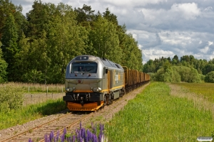 CN 312 001 med GT 63183. Sträningstorp - Högäsen 17.06.2017.