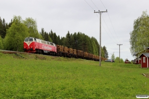 IBAB TMZ 1421 med Spärrfärd. Rossön - Hoting 09.06.2015.
