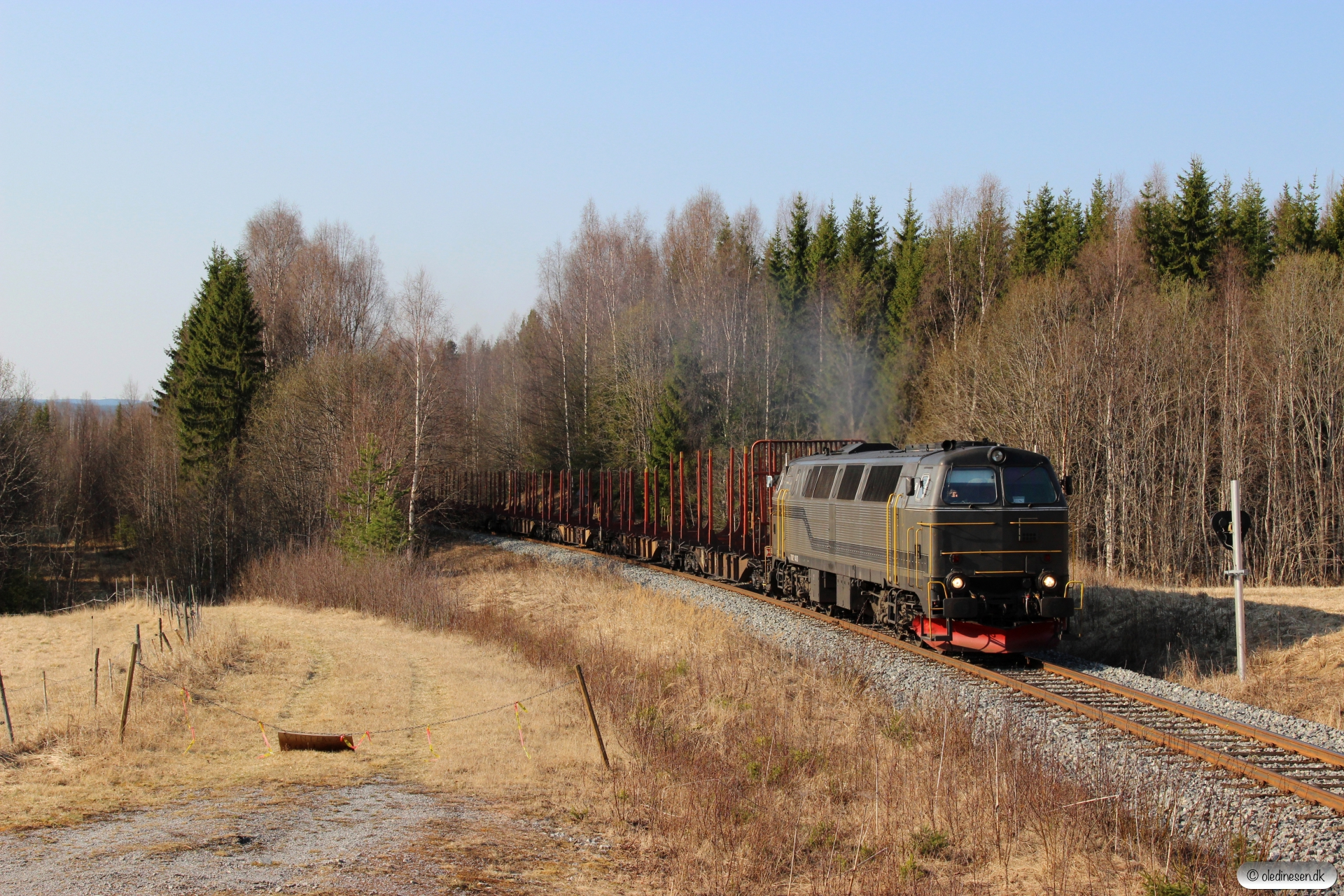 BLSR TMZ 1403 med GT 46192. Forsmo - Ådalsliden 04.05.2016.