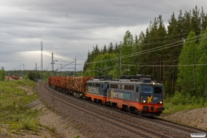 HCTOR 142.002+142.106 med GT 41783. Bensjöbacken 11.06.2017.