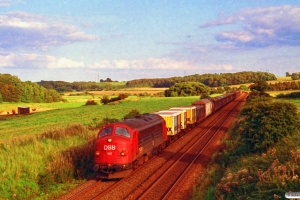 DSB MY 1113 med G 7651 Gb-Es. Km 25,7 Fa (Kolding-Lunderskov) 28.08.1993.