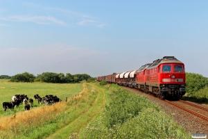 DB 233 321-9+232 498-6 med EZ 47411. Tønder Grænse - Süderlügum 03.08.2015.