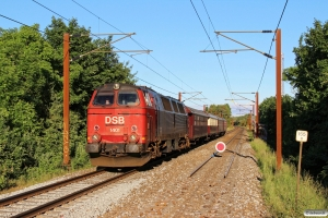 DSB MZ 1401+CC 1132+BU 3702+AC 42+AX 393 som VM 241403 Gb-Od. Km 155,8 Kh (Marslev-Odense) 11.06.2016.