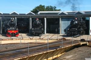 SJ F 1200, DSB E 994 og E 991. Odense 31.08.2008.