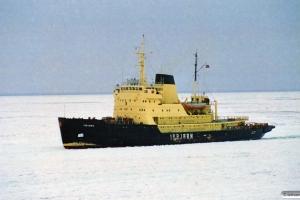 Isbjørn. Nyborg 14.02.1996.