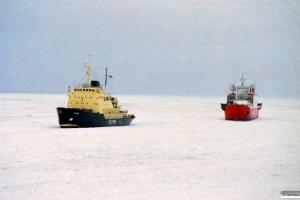 Isbjørn og Difko Korsør. Nyborg 14.02.1996.