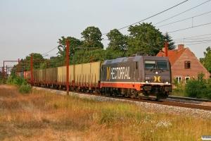 HCTOR 241.004 med HG 21873 Mgb-Pa (militærtransport). Holmstrup 01.07.2009.