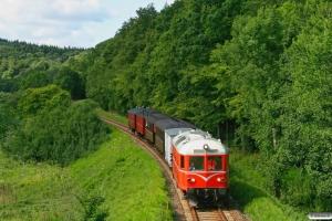 HHJ DL 11+IB 18 915+TKVJ C 21+KS C 3+FFJ C 72+RGGJ C 3 som VP 6430 Jl-Vj. Km 106,8 Ho (Jelling-Grejsdal) 16.08.2009.
