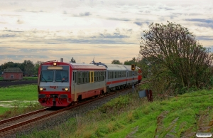 Norddeutsche Eisenbahngesellschaft Niebüll (NEG)