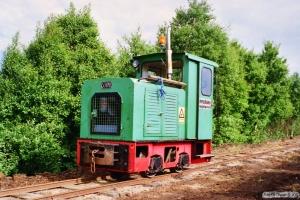 Lok 113 (Schöma 1988). Lille Vildmose 22.06.1995.