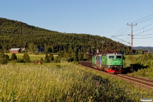 GC Rc4 1307+Rc4 1163+Rc4 1189 med GT 9107. Österås - Långsele 19.06.2018.