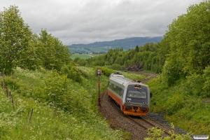 NSB BS 9260+BM 9210 som Pt 442 (Steinkjer-Søberg). Skogn - Ronglan 12.06.2017.
