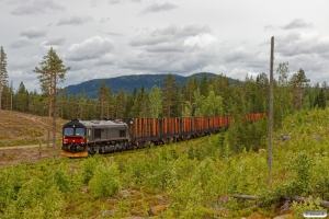 BRLL T66 401 med GT 40702. Älvho - Vassjön 21.06.2018.